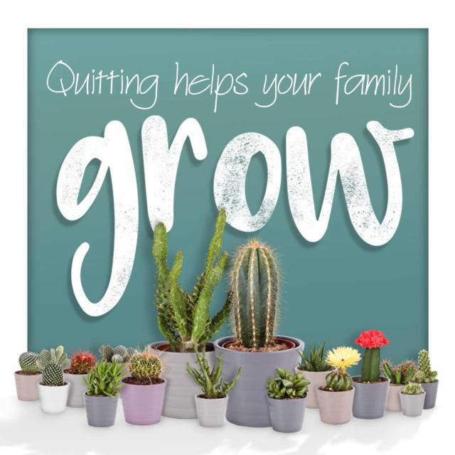 "Photo of a collection of cacti with text saying ""quitting helps your family grow."""
